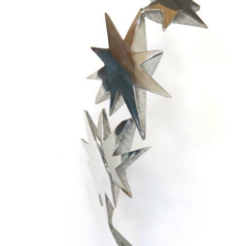 Guillaume ROCHE - star 2